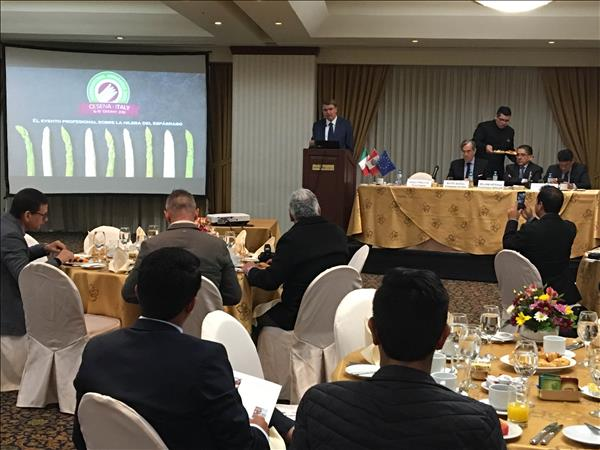 Macfrut e International Asparagus Days: presentati in Perù